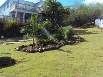 Garden/House view